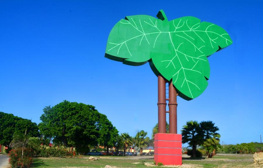 Campo Alegre wil vakbond