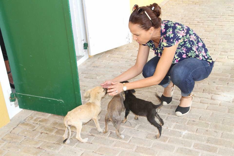 Giselle Mc Williams wil buitengewone opsporingsambtenaren tegen dierenmishandeling
