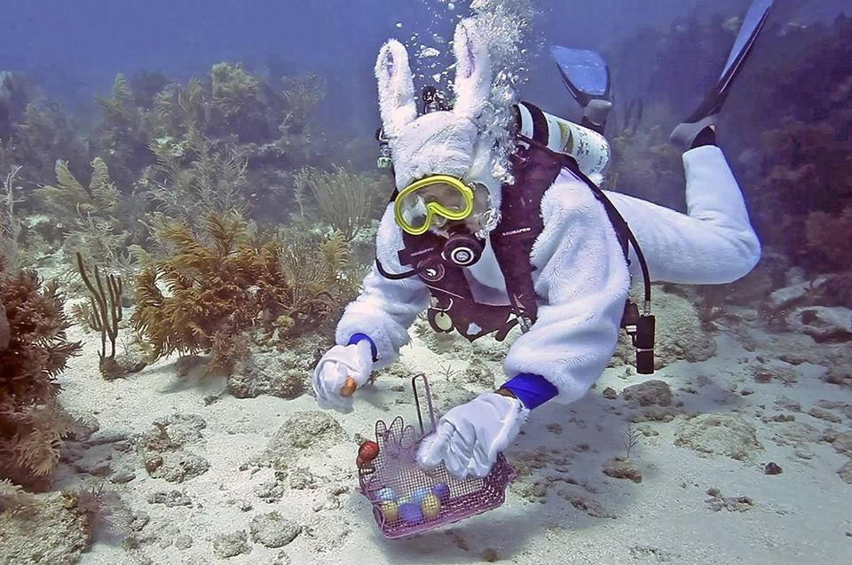 Under Water Easter Egg Hunt - Piscadera Bay @ Piscadera Bay
