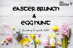 Easter Brunch & Egg Hunt - Ostrich Farm @ Curacao Ostrich Farm