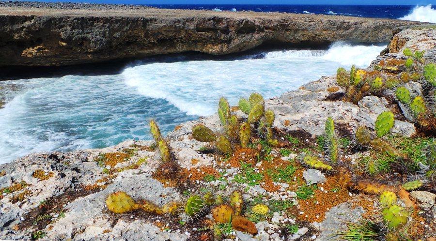 De kust van Curaçao