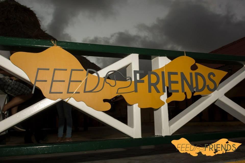 Feed Friends Foundation zwerfhonden voeren op Curaçao