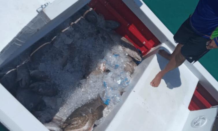 Kustwacht controleert vishandel uit Venezuela