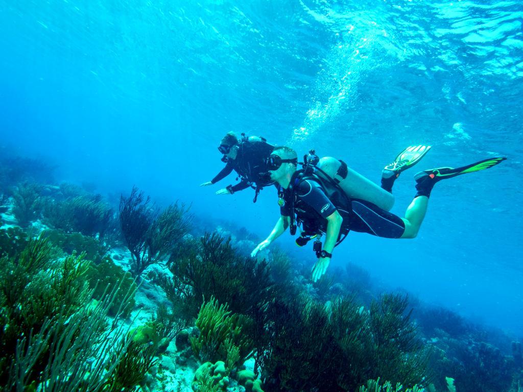 Leren duiken op Curaçao