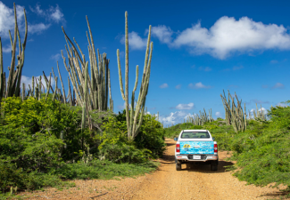 AB Car Rental Bonaire